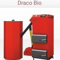Dracogo